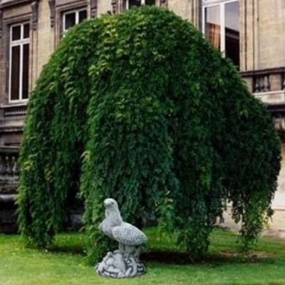 Különleges kerti szobrok...