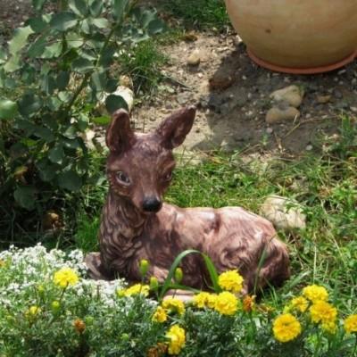 Fekvő őzike kerti dísz...