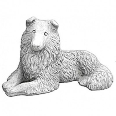 Hosszúszőrű skót juhászkutya